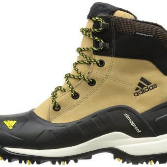 chaussure pour marcher dans la neige