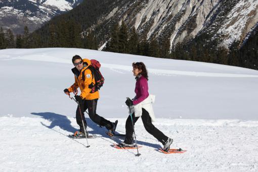 raquette de ski